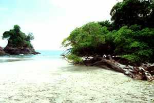 Costa Rica: Playa Manuel Antonio