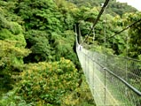 Monteverde - Skywalk